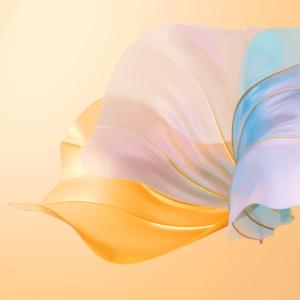 Huawei Nova 8 Pro Wallpaper for iPhone Flower
