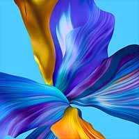 Honor V40 5G Wallpaper 15 iDisqus 200x200