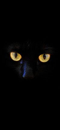 Black cat eye Mysterious iPhone Wallpaper 200x433